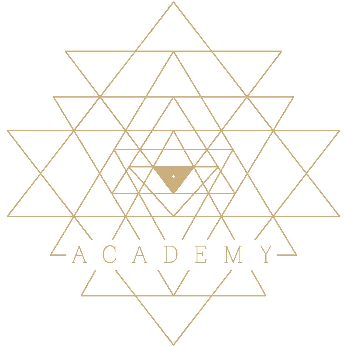Selbstentdeckung Academy Logo
