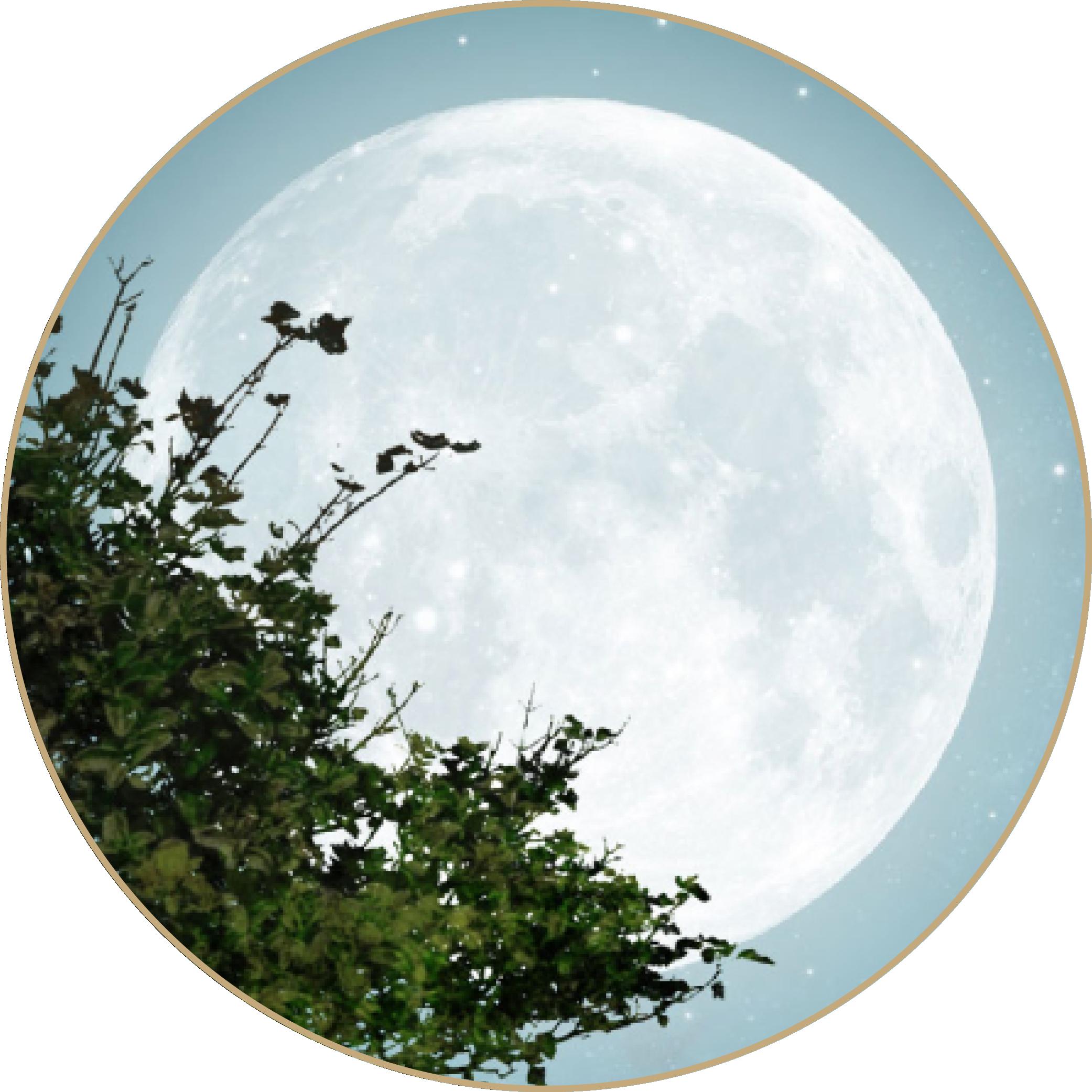 Selbstentdeckung Human Design Mondwissen Mondtage Mondkalender