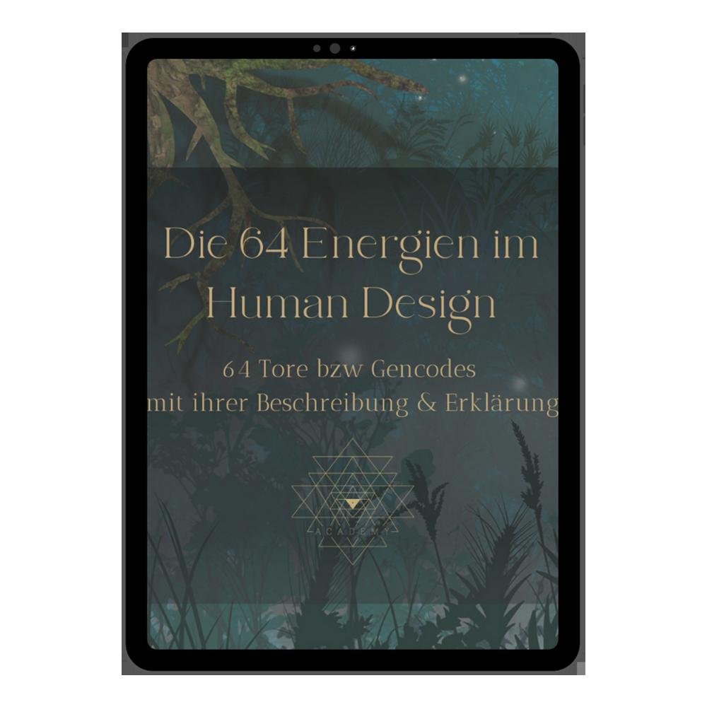 Selbstentdeckung Die 64 Energien im Human Design. 64 Tore bzw. Encoder mit ihrer Beschreibung und Erklärung