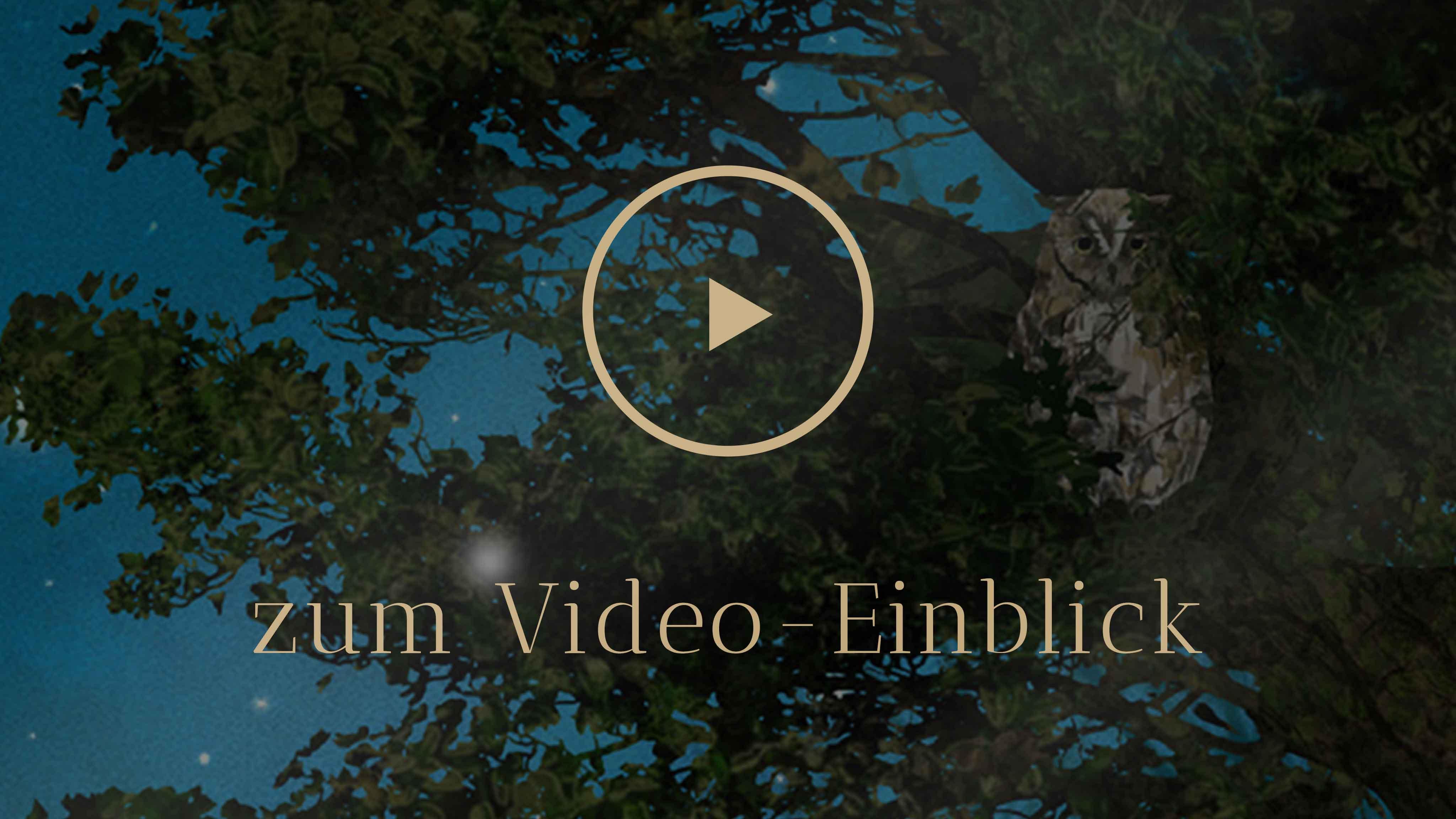Selbstentdeckung Human Design Deep Diving Video Einblick