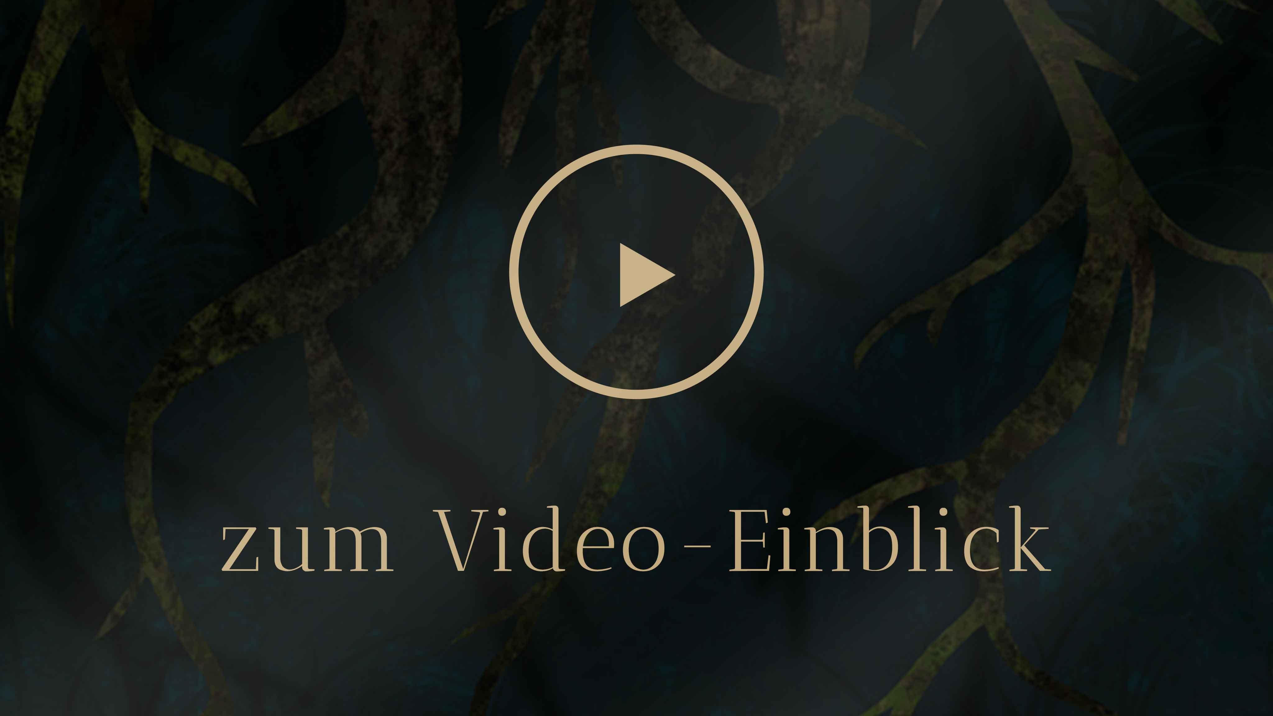 Selbstentdeckung Human Design Einstieg Video Einblick