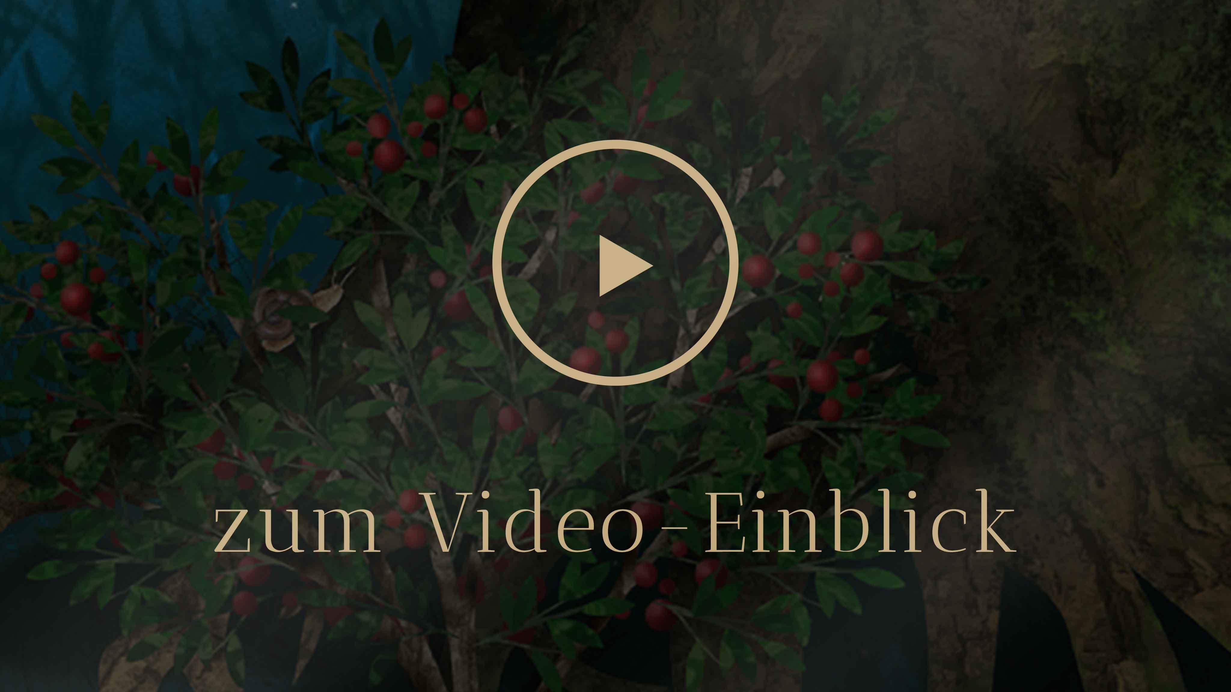 Selbstentdeckung Human Design Ernährung Video Einblick
